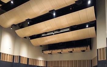 acoustical ceiling 350x220
