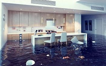 flood 350 x 220